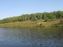 Orilla de agosto de un lago del verano foto de archivo