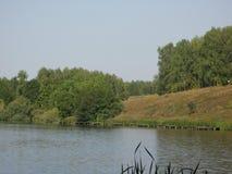 Orilla de agosto de un lago del verano fotos de archivo