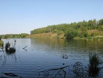 Orilla de agosto de un lago del verano imagenes de archivo