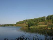 Orilla de agosto de un lago del verano fotografía de archivo