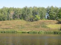 Orilla de agosto de un lago del verano imagen de archivo