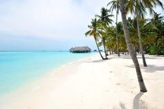 Orilla de Maldives Fotos de archivo