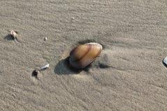 Orilla de mar de Galille en el holyland Fotografía de archivo
