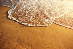 Orilla de mar de oro Imagenes de archivo