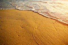 Orilla de mar de oro Fotografía de archivo libre de regalías