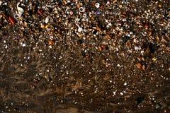 Orilla de mar llenada de las cáscaras y de otras cosas fotografía de archivo