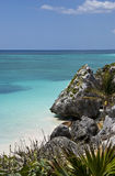 Orilla de mar magnífica en Tulum México foto de archivo libre de regalías