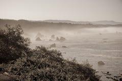 Orilla de mar monocromática en la Costa del Pacífico Imágenes de archivo libres de regalías