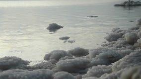Orilla de mar muerta almacen de metraje de vídeo