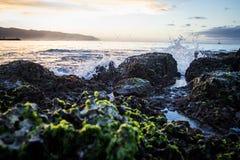 Orilla de mar pacífica en Oahu Hawaii imagen de archivo