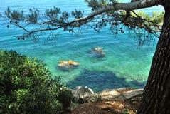 Orilla de mar pura de verde azul Foto de archivo