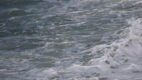 Orilla de mar salvaje metrajes