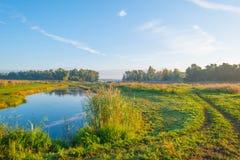 Orilla de un lago en la salida del sol Imagen de archivo