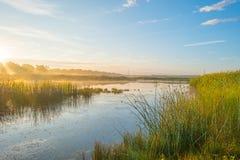 Orilla de un lago en la salida del sol Imágenes de archivo libres de regalías