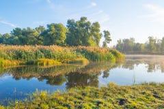 Orilla de un lago en la salida del sol imagenes de archivo