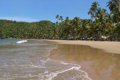 Orilla de una playa tropical fotos de archivo
