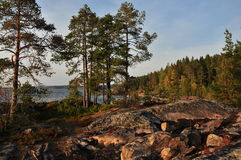 Orilla del agua del lago ladoga Fotografía de archivo libre de regalías