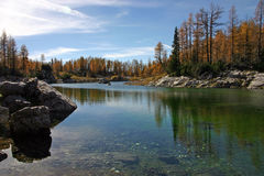 Orilla del lago de Dolina Triglavskih Jezer de los alerces del otoño de Triglav NP Imagen de archivo