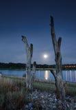 Orilla del lago del claro de luna Fotografía de archivo
