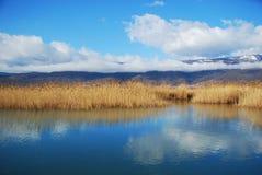 Orilla del lago del silencio Fotografía de archivo libre de regalías