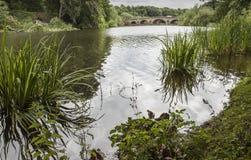 Orilla del lago en el priorato de Nostell Fotos de archivo