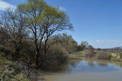 Orilla del lago en primavera imagenes de archivo