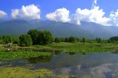 Orilla del lago Kerkini, Grecia Foto de archivo