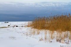 Orilla del lago ladoga en el invierno Imágenes de archivo libres de regalías
