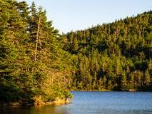 Orilla del lago mountain, Forest Glowing en la puesta del sol fotografía de archivo