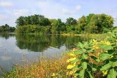 Orilla del lago summer Fotografía de archivo libre de regalías