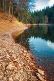 Orilla del lago Synevyr imágenes de archivo libres de regalías