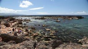 Orilla del norte Oahu almacen de video
