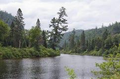 Orilla del río fotos de archivo libres de regalías