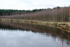 Orilla del río Fotografía de archivo