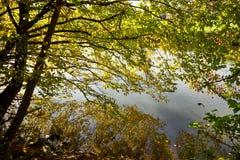 Orilla del río canalizada A de Autumn Countryside View Of fotos de archivo