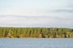Orilla del río con los árboles y los arbustos verdes en la puesta del sol Imagenes de archivo