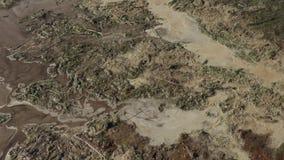 Orilla del río contaminada Desastre ecol?gico almacen de metraje de vídeo