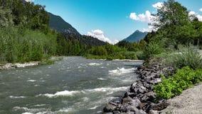 Orilla del río de desatención del bosque imagenes de archivo