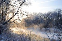 Orilla del río del crédito Fotos de archivo libres de regalías