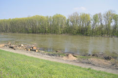 Orilla del río después del corte de madera Foto de archivo