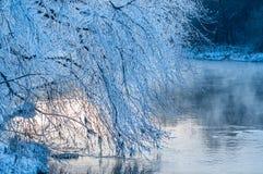 Orilla del río en invierno Fotos de archivo libres de regalías