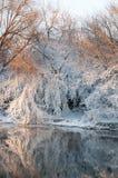 Orilla del río en invierno Fotografía de archivo