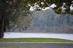 Orilla del río fría imagen de archivo