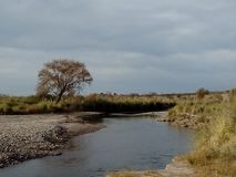 A orilla del río stock images