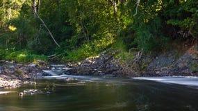 Orilla del río rocosa con el bosque Imagenes de archivo