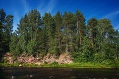 Orilla del río rocosa con el bosque Foto de archivo libre de regalías