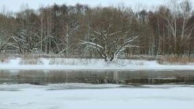 Orilla en el invierno Tiro liso del resbalador metrajes