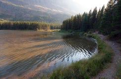 Orilla herbosa del lago Fishercap en Parque Nacional Glacier en Montana los E.E.U.U. fotografía de archivo libre de regalías