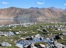Orilla pedregosa del lago Bulunkul en las montañas de Tayikistán Foto de archivo libre de regalías