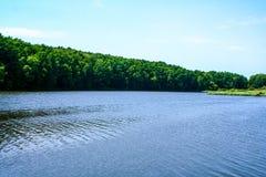 Orilla verde de un lago del verano imagenes de archivo